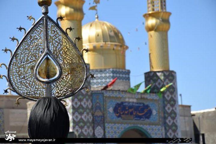 اجتماع عزاداران تاسوعای حسینی در میامی برگزار شد +تصاویر